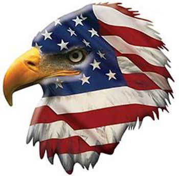 Patriotic American Flag Eagle Head Facing Left Red White