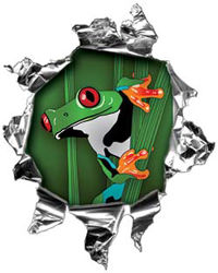 Mini Rip Torn Metal Bullet Hole Style Graphic with Coqui Frog Peaking