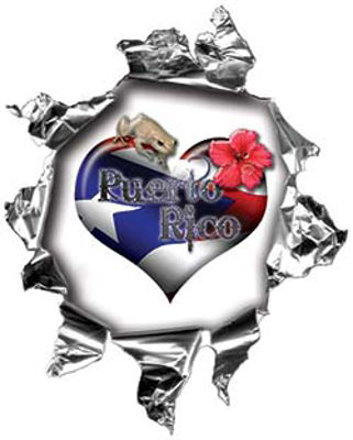 Mini Rip Torn Metal Bullet Hole Style Graphic with Puerto Rico Flag Coqui Frog and Flower Heart