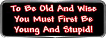 Crazy Biker Helmet, Bumper and Wall Decal / Sticker - To be old and wise you must first be young and stupid!