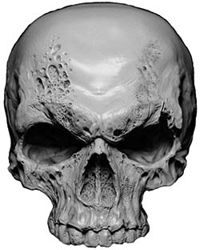 Skull Decal / Sticker in Gray