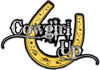 Cowgirl Up Decal / Sticker Western Style Writing with Horseshoe in Yellow