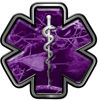 Star of Life Emergency Response EMS EMT Paramedic Decal in Purple Camouflage
