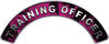 Training Officer Fire Fighter, EMS, Rescue Helmet Arc / Rockers Decal Reflective In Inferno Pink Real Flames