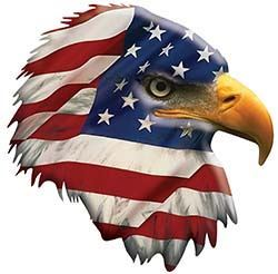 Patriotic American Flag Eagle Head Facing Right Decal