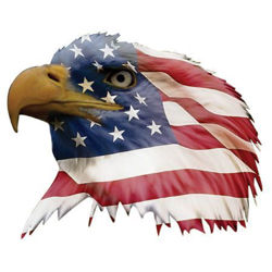 Patriotic American Flag Bald Eagle Head Facing Left Decal