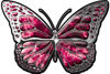 Chrome Butterfly Decal in Pink Inferno