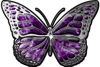 Chrome Butterfly Decal in Purple Inferno