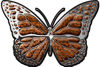 Chrome Butterfly Decal in Orange