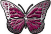 Chrome Butterfly Decal in Pink