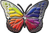 Chrome Butterfly Decal with Rainbow Colors