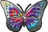 Chrome Butterfly Decal with Tie Dye Colors