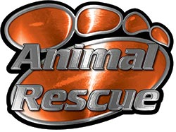 Animal Pet Rescue Paw Decal in Orange