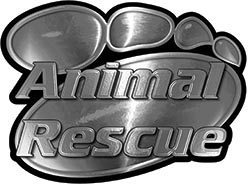 Animal Pet Rescue Paw Decal in Silver