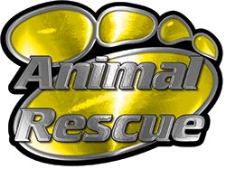 Animal Pet Rescue Paw Decal in Yellow